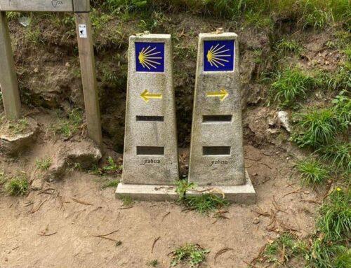 Choosing Between Two Paths